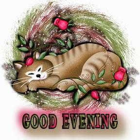 {#_Good Evening_cattulpSST.jpg}