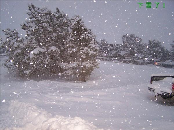 {#Snow 1.jpg}