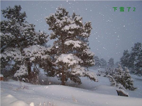 {#snow 2.jpg}