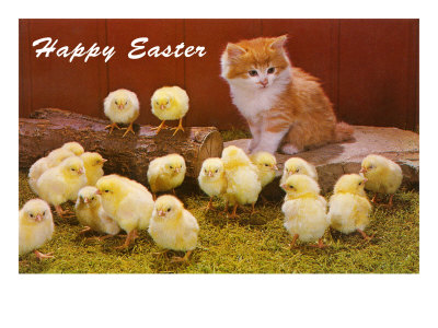 {#happy-easter-kitten-and-chicks.jpg}