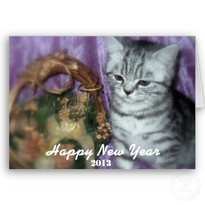 {#happy_new_year_kitten_card-p137610018514891175b21fb_400.jpg}