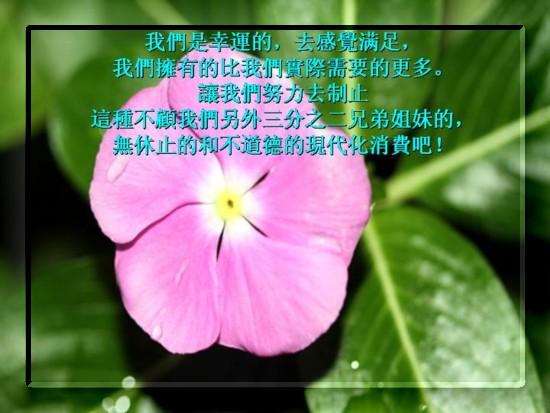 {#Slide16.JPG}